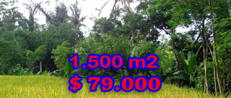 Land for sale in Bali, wonderful view in Ubud Bali – TJUB243