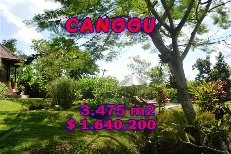 Land in Bali for sale, incredible view in Canggu Pererenan Bali – TJCG101
