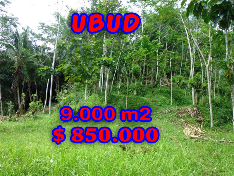Land for sale in Bali, Exotic view in Ubud Bali – TJUB239