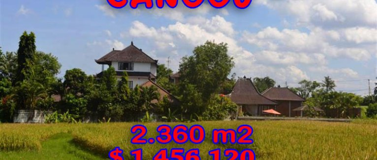 Land in Bali for sale, Spectacular view in Canggu Bali – TJCG102