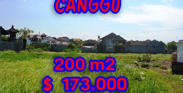 Astonishing Land for sale in Bali, Fantastic Rice fields view in canggu brawa – TJCG109