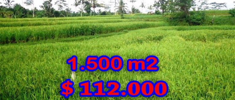 Magnificent Property for sale in Bali, land for sale in Ubud Bali  – TJUB242