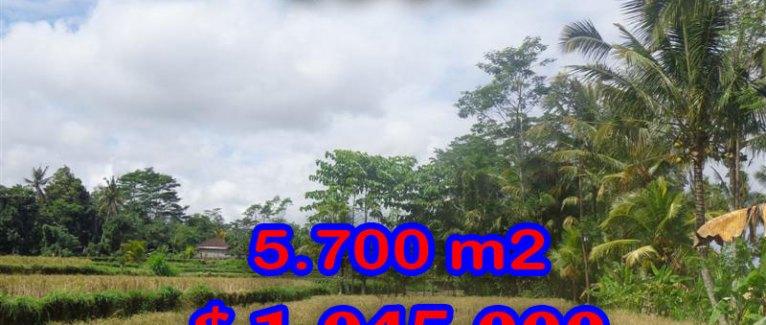Land in Bali for sale, Stunning view in Ubud Bali – TJUB279