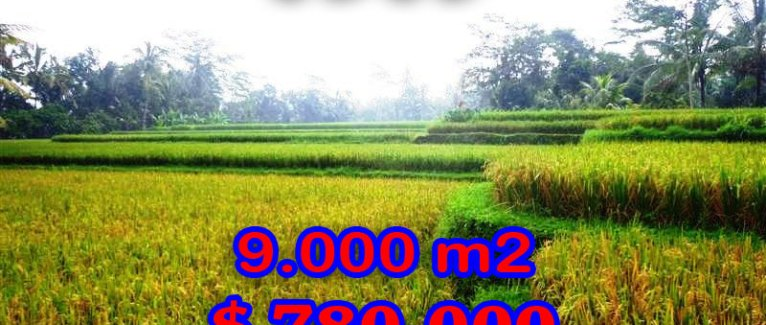 Land in Bali for sale, great view in Ubud Bali – TJUB264