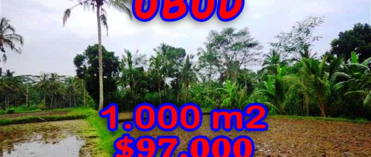 Land in Bali for sale, fantastic view in Ubud Bali – TJUB255