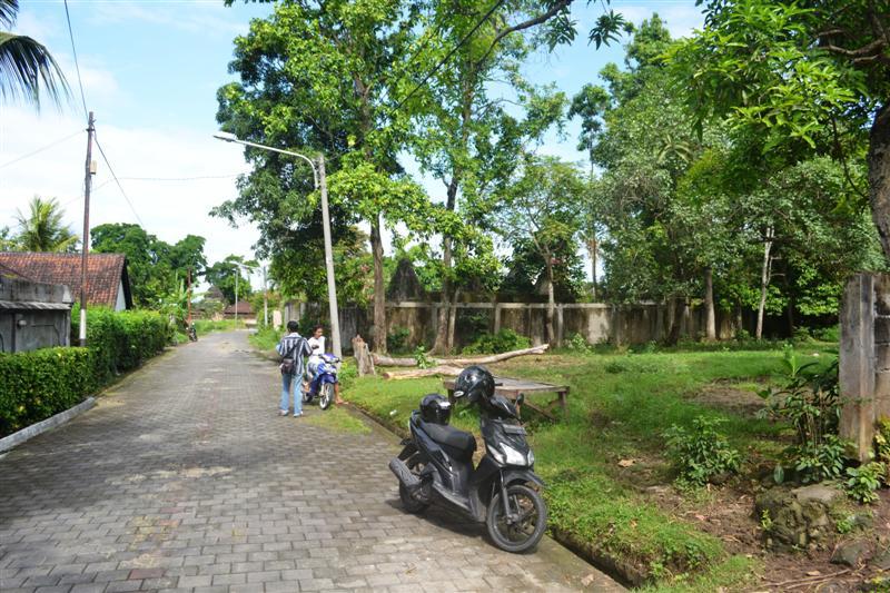 TJCG114 land for sale in Canggu Bali