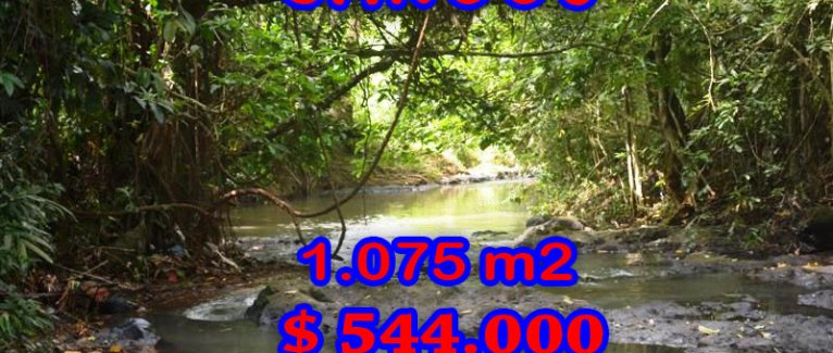 Land in Bali for sale, Fantastic paddy field view in Canggu Pererenan – TJCG113
