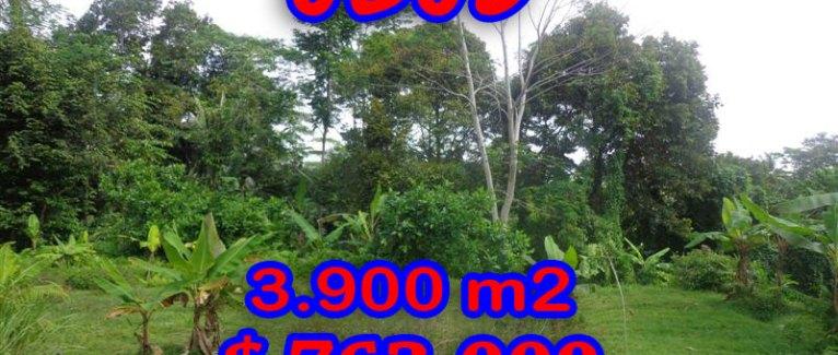 Astonishing Property in Bali, Land in Ubud Bali for sale – TJUB276