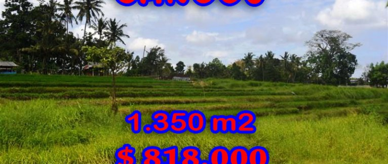 Land for sale in Bali, Spectacular river view in Canggu Pererenan – TJCG114