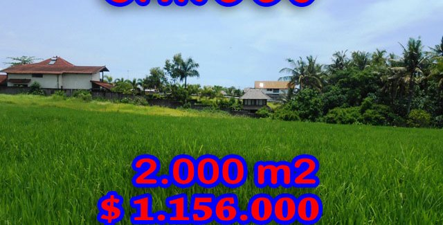 Magnificent Property for sale in Bali, land for sale in Canggu Bali  – TJCG093