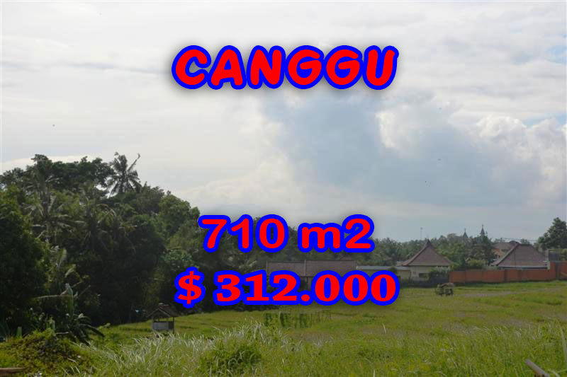 Exceptional Bali Land for sale, stunning Rice fields view  in canggu Berawa – TJCG110