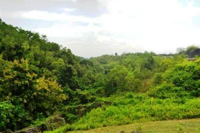 Land in Jimbaran for sale in Bali