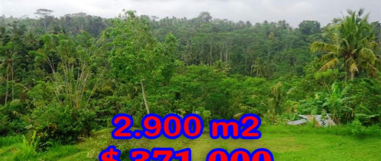 Land in Bali for sale, Fantastic mountain view in Ubud Tampak Siring – TJUB272