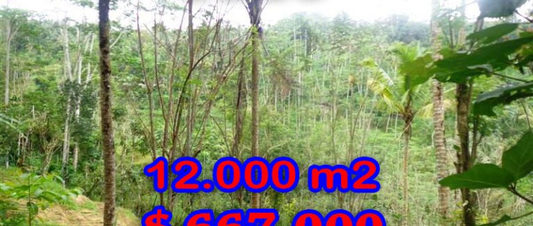 Fantastic Land for sale in Bali, Amazing rice fields view in Ubud Tampak Siring – TJUB275