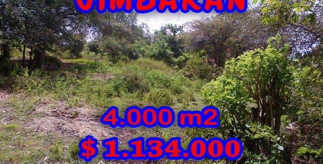 Land for sale in Jimbaran Sawangan, Magnificent Property in Bali  – 4.000 m2 @ $ 283