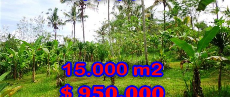 Land in Bali for sale, Spectacular view in Ubud Bali – TJUB261