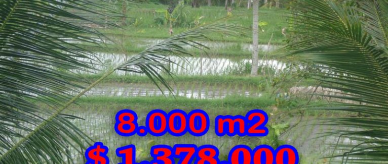 Land in Bali for sale, Magnificent view in Ubud Tampak Siring – TJUB277