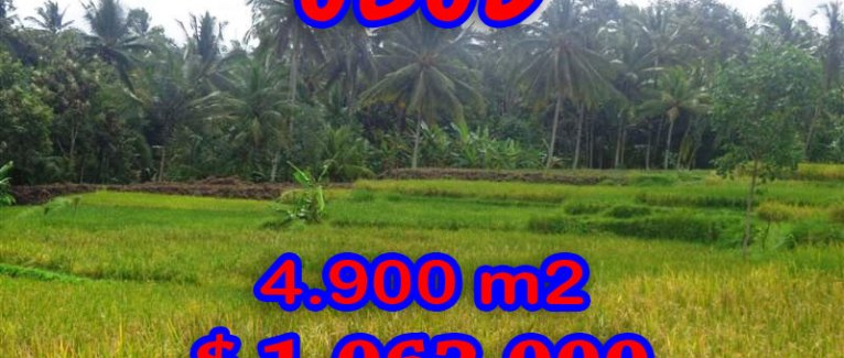 Land for sale in Bali, Magnificent paddy fields view in Ubud Center – TJUB278