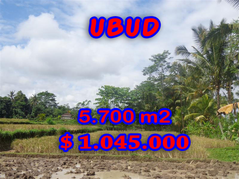 Land in Bali for sale, Magnificent rice paddy view in Ubud Pejeng – TJUB279
