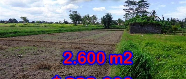 Land for sale in Ubud Bali, Magnificent view in  Ubud Center – TJUB300