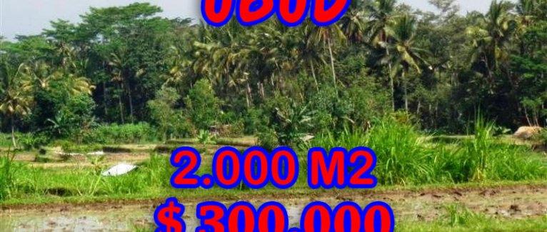 Amazing Land for sale in Bali, Stunning rice paddy view in Ubud Tampak siring – TJUB267