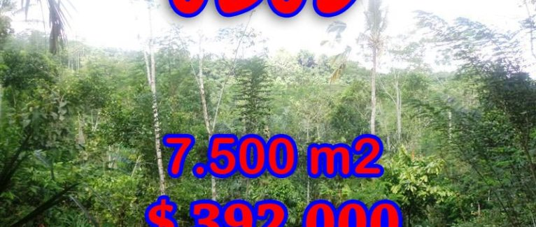 Land in Bali for sale, attractive view in Ubud Tegalalang Bali – TJUB290