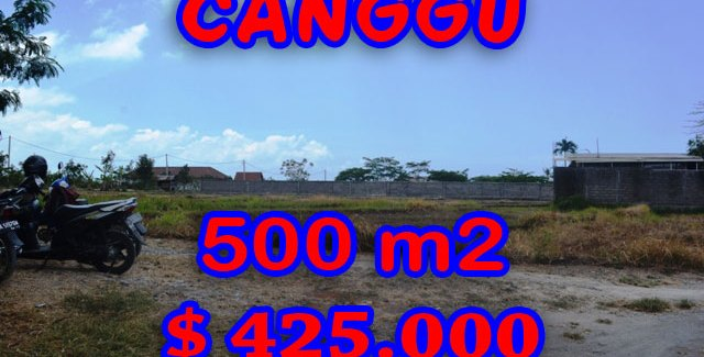 Stunning Land for sale in Bali, rice paddy view in Canggu Bali – TJCG122