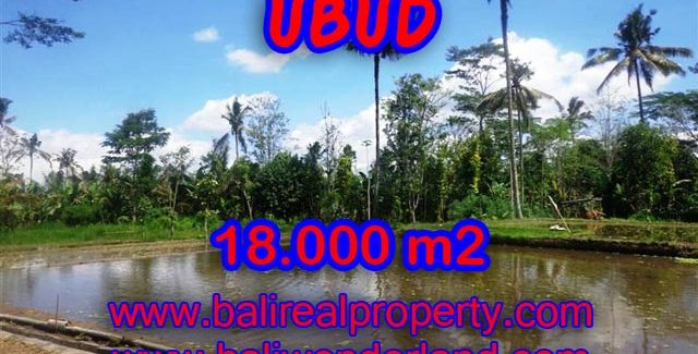Outstanding Property for sale in Bali, land for sale in Ubud Bali  – 18,000 sqm @ $ 83