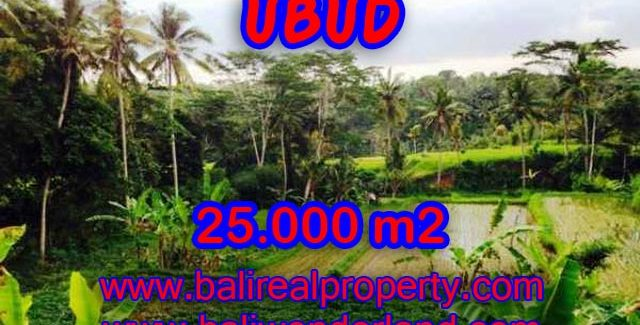 Land in Bali for sale, attractive view in Central Ubud Bali – TJUB350