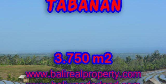 Exotic Land for sale in Tabanan Bali, beach and mountai view in TABANAN – TJTB074