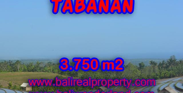Exotic Land for sale in Tabanan Bali, beach and mountai view in TABANAN – TJTB074