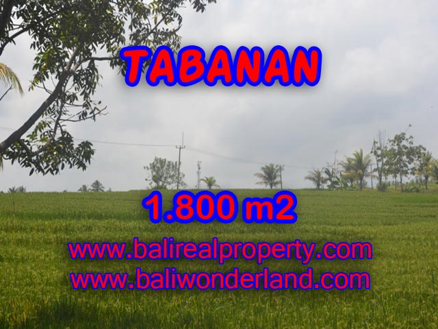Fascinating Land in Bali for sale in SOKA TABANAN Bali – TJTB083