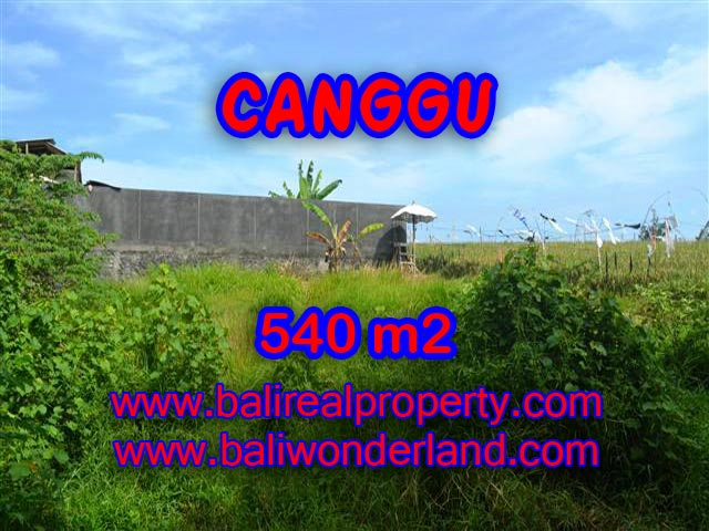 Magnificent Land for sale in Bali, rice fields view on river side in Canggu Bali – TJCG131