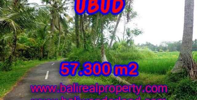 Land in Bali for sale, Stunning view in Ubud Bali – TJUB377