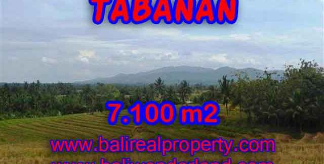 Beautiful Land for sale in Bali, paddy fields, mountain and ocean view in Tabanan Bali – TJTB125