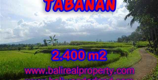Astonishing Property for sale in Bali, LAND FOR SALE IN TABANAN Bali – TJTB126