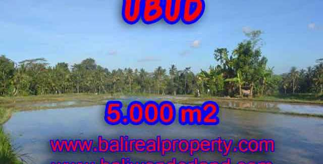 Land in Ubud Bali for sale, nice view in Ubud Payangan Bali – TJUB413