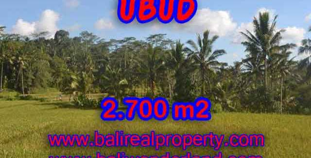 Exotic LAND FOR SALE IN UBUD Bali, paddy field, forest and river view in Ubud Payangan– TJUB414