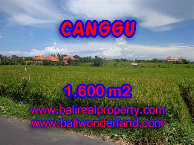 Land in Bali for sale, Stunning view in Canggu Bali – TJCG139
