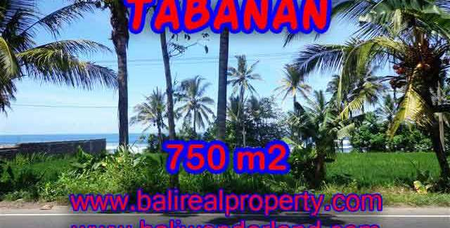 Extraordinary Land for sale in Tabanan Bali, Ocean and ricefields view in Tabanan Selemadeg – TJTB105