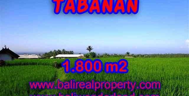 Land in Bali for sale, Outstanding view in Tabanan Penebel Bali – TJTB119