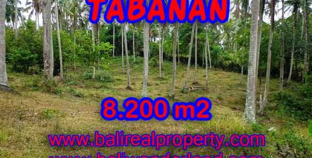 Spectacular Property for sale in Bali, land for sale in Tabanan Bali – TJTB142