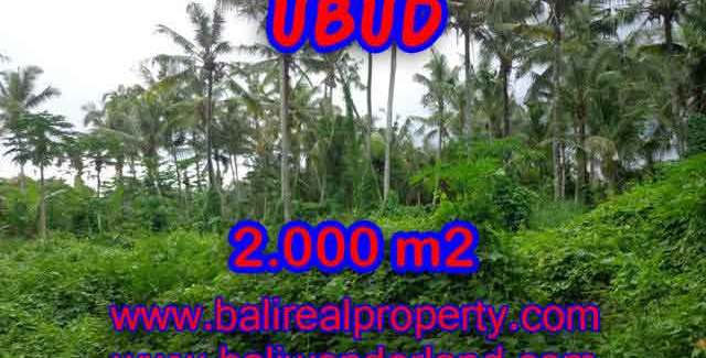 Property in Bali for sale, Fantastic view in Ubud Center – TJUB397