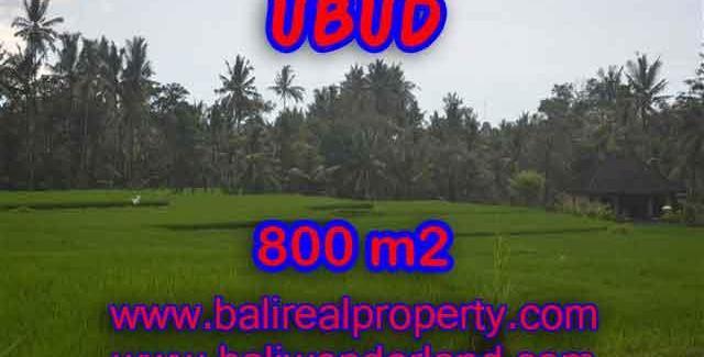 Fantastic Property for sale in Bali, land sale in Ubud Bali – TJUB396