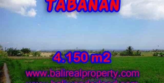 Fantastic Property for sale in Bali, land sale in Tabanan Bali – TJTB137