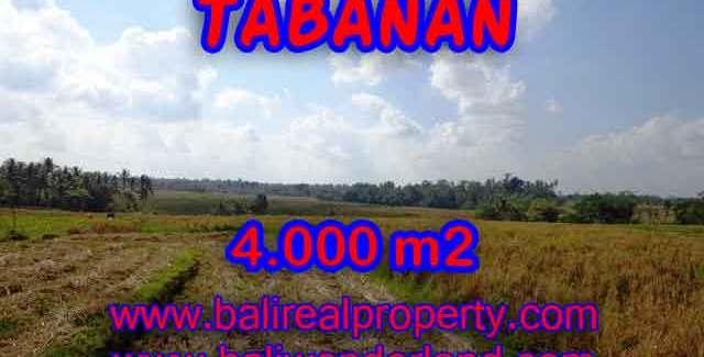 Stunning Property for sale in Bali land sale in Tabanan Bali – TJTB132