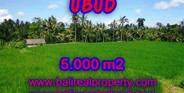 Beautiful Property for sale in Bali, LAND FOR SALE IN UBUD Bali – TJUB389