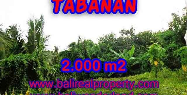 Land in Tabanan for sale, Stunning view in Tabanan Selemadeg Bali – TJTB099