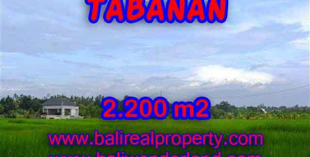Land for sale in Tabanan, Stunning view in Tabanan kediri Bali – TJTB097
