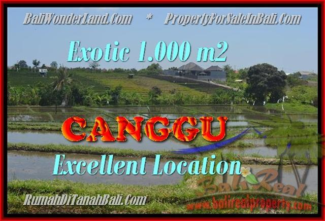 Beautiful PROPERTY 1.000 m2 LAND SALE IN CANGGU BALI TJCG168